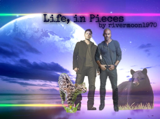 life-in-pieces-titlecard-2